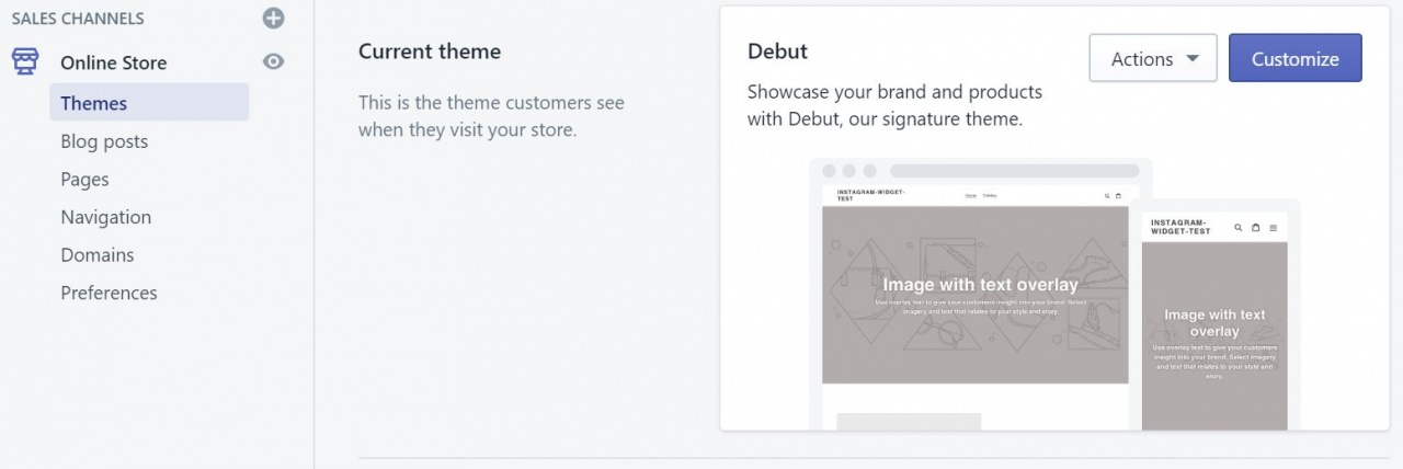 Screenshot showing where is the Customize theme button in Shopify.